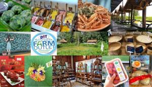 กรมการค้าภายในชวนเช็คอิน Farm Outlet ต้นแบบ 15 แห่ง สัมผัสนิยามใหม่ของสินค้าเกษตรที่ต้องลิ้มลอง