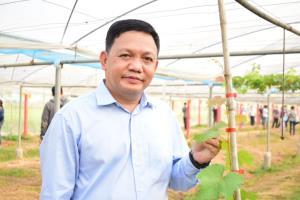 """นักวิจัยทุน วช. โชว์เทคนิคการปลูก """"องุ่นไชน์มัสแคท"""" องุ่นพรีเมียมจากแดนปลาดิบ ดันเป็นพืชเศรษฐกิจตัวใหม่"""