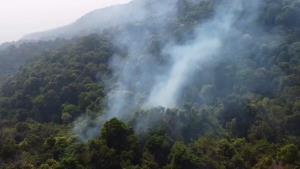 """จนท.ระดมกำลังด่วนเร่งดับไฟไหม้ป่า """"ดอยสุเทพ"""" ใกล้พระตำหนักภูพิงคฯ"""