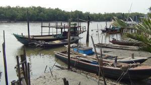 เปิดวิกฤตท่องเที่ยวปากอ่าวแม่น้ำบางปะกง หลังไร้เงาโลมาเฉียดให้ชมเช่นในอดีต