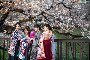 ญี่ปุ่นฝ่าโควิด ชมดอก