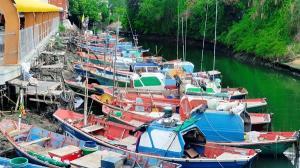 กลุ่มประมงเรือเล็กสัตหีบ รวมตัวเรียกร้อง ทม.สัตหีบ เปิดสะพานขนส่งอาหารทะเล