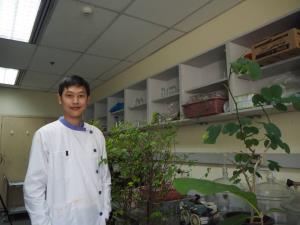 วช.หนุนนักวิจัย มจธ.ศึกษาต้นไม้ใหญ่ลดฝุ่น PM 2.5