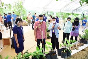 พิพิธภัณฑ์การเกษตรเฉลิมพระเกียรติฯ สานต่องานอนุรักษ์พันธุกรรม