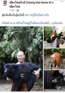 """อุทาหรณ์! อย่าให้สุนัขกินกระดูกไก่ หลังทำ """"โทน"""" สุนัขยักษ์ใหญ่ใจดี วัดเจดีย์หลวงตาย"""