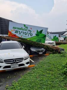 """ฝนตก-ลมกระโชกแรง ทำเสาไฟฟ้า """"ตลาดต้นไม้สบายใจ"""" ล้มทับรถเสียหายหลายคัน"""