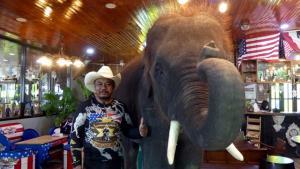 แห่งเดียวในโลก เปิดร้านอาหารเสิร์ฟการแสดงช้างยันโต๊ะ