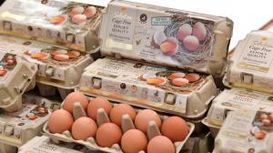 ซีพีเอฟตอกย้ำไข่ไก่คุณภาพพรีเมียม สด สะอาด ปลอดภัย ดีต่อใจทุกฟอง