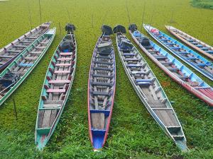 'ทะเลน้อย' ซบเซาไร้เงานักท่องเที่ยวแม้ดอกบัวแดงบานสะพรั่ง ขณะที่ยอดผู้ติดเชื้อ จ.พัทลุง ยังพุ่งสูง