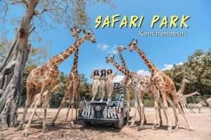 ผู้ว่าฯ กาญจน์สั่งปิดสวนสัตว์เปิดซาฟารีปาร์คนาน 2 สัปดาห์ พบพนักงานมีผู้ติดเชื้อโควิด-19