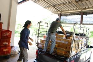 ต้นฤดูเจอโควิดระบาด แต่โซเชียลฯ ช่วยรอด คนแห่ซื้อเชอร์รีดอยแม่สลองจนแพกส่งแทบไม่ทัน
