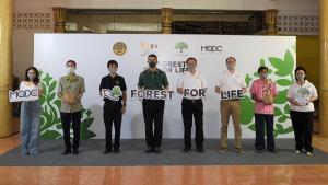 """""""โครงการ Forest for Life สร้างป่าสร้างชีวิต"""" บรรลุเป้า ได้กล้าไม้ 1 ล้านต้น เพิ่มพื้นที่สีเขียว"""