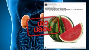ข่าวปลอม! แตงโมต้มผสมกับน้ำตาล ดื่มรักษาโรคไต