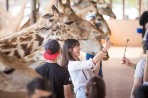 'ซาฟารีเวิลด์' รุกสร้าง 'Digital Experience' เตรียมเปิดประสบการณ์ใหม่ให้นักท่องเที่ยว