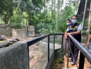 """ต้อนรับฤดูฝน! สวนสัตว์เปิดเขาเขียวเปิดส่วนแสดงใหม่ """"Wonderful rain forest"""" สร้างมิติการชมสัตว์"""