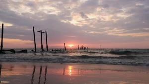 """""""หาดเขาปิหลาย"""" อเมซิ่งพังงา ตื่นตาปูเสฉวน-ชวนชมสะพานไม้ที่อาจเหลือเพียงตำนาน"""