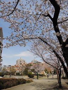 ค่าเช่าห้องราคาถูกเหมือนให้เปล่าที่ญี่ปุ่นที่ไม่มีใครบอกคุณ !!