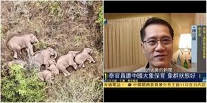"""ทีวีจีน """"ฟีนิกซ์ทีวี"""" ขอความเห็น 'วีระศักดิ์ โควสุรัตน์' แนวทางอนุรักษ์ช้างป่า จากปรากฎการณ์ช้างป่าจีน 15 ตัวอพยพ"""