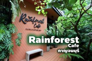 """Rainforest Cafe"" คาเฟ่สวยเมืองกาญจน์ รื่นรมย์บรรยากาศป่าฝน"