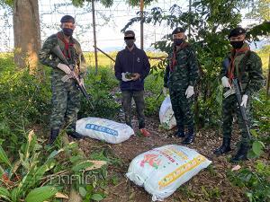 รวบตัวกองทัพมด 1 ราย ขณะขนใบกระท่อมจากรั้วชายแดนไทย-มาเลย์