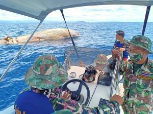 กู้ซากวาฬบรูด้า ใกล้สูญพันธุ์ ที่เกาะทะลุ