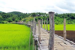 สะพานซูตองเป้ จ.แม่ฮ่องสอน