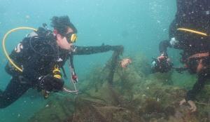 กรมทะเลร่วม ศรชล.ภาค 1 ปฏิบัติการเก็บกู้อวนยักษ์เกาะมารวิชัย เมืองพัทยา