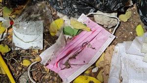 ชาวบ้านผวา! เทศบาลประจวบฯ นำขยะติดเชื้อทิ้งในป่าชายเลนพื้นที่ชุ่มน้ำใจกลางเมือง