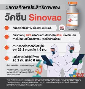 ผลการศึกษาประสิทธิภาพของวัคซีน Sinovac