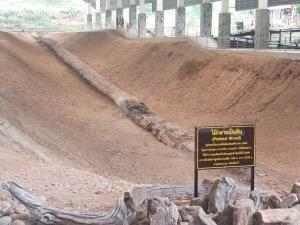 ไม้กลายเป็นหินท่อนยาวที่สุดในโลกที่ จ.ตาก (ภาพ : อช.ดอยสอยมาลัย)