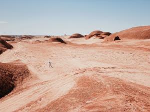 ชมภาพถ่ายชนะรางวัล iPhone Photography Award ประจำปี 2021