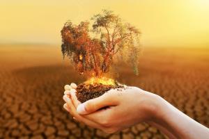ธุรกิจกับการแก้ปัญหาโลกร้อน (ตอนที่ 2) / ดร.กฤษฎา เสกตระกูล