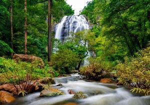 """""""น้ำตกคลองลาน"""" อลังการสายน้ำแห่งป่าใหญ่ในกำแพงเพชร เที่ยวชมได้แบบ New Normal"""
