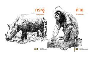 """หาชมยาก ภาพวาดลายเส้นสัตว์ป่า ฝีมือ """"สืบ นาคะเสถียร"""" ตำนานนักอนุรักษ์เมืองไทย"""