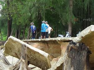 ชาวสิเกาโอดเจอคลื่นกัดเซาะชายฝั่งหนักกว่าทุกปี วอนเร่งแก้ไขป้องกันส่วนที่เหลือด่วน