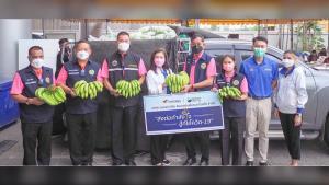"""""""เนเจอร์เฮิร์บ"""" ช่วยเกษตรกร เหมากล้วยหอม 2 ตันแจกจ่าย ปชช.จังหวัดปทุมธานี"""