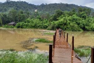 (คลิป)ชาวเน็ตแห่แชร์คลิปขณะน้ำป่าจากเขาคิชฌกูฏทะลักลงพื้นที่หลังฝนตกหนัก