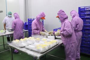 วิจัยและนวัตกรรม เพื่อยกระดับเกษตรกรไทยสู่ยุคเกษตร 4.0  โดย วช.