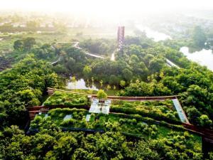 ทูลกระหม่อมหญิงอุบลรัตนฯ พระราชทาน 3 รางวัลแก่สถาบันปลูกป่าฯ ปตท.