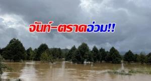 จันทบุรี-ตราดอ่วม! ฝนหนักทำสวนทุเรียนเสียหายแล้วกว่า 1,000 ไร่ บ้านเรือนถูกน้ำท่วมกว่า 100 หลัง