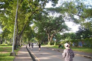 กทม.ชวนปลูกและดูแลต้นไม้ เนื่องในวันคล้ายวันพระราชสมภพสมเด็จย่า และวันรักต้นไม้ประจำปีของชาติ