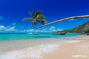 """""""เกาะเต่า"""" สวรรค์นักท่องเที่ยว นรกของนักโทษการเมือง! ถูกส่งไปหวังจะให้ตายคาเกาะ!!"""
